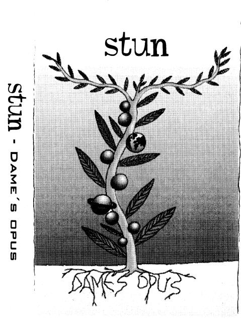 Stun Front